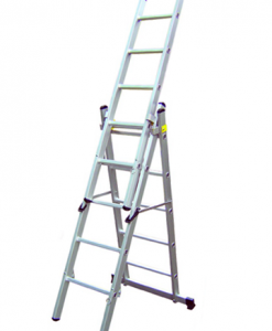 profession combination ladder malaysia
